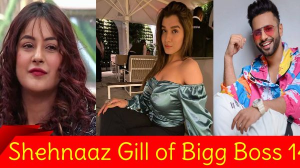 Shehnaaz Gill of Bigg Boss 14