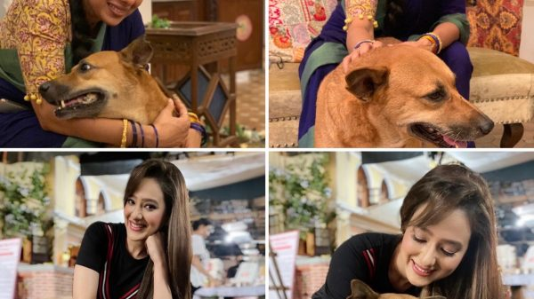 The cast of Anupamaa loves dogs
