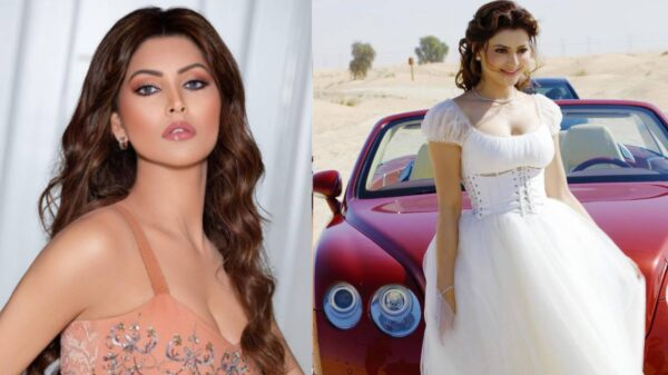 whopping price of Urvashi Rautela's dress