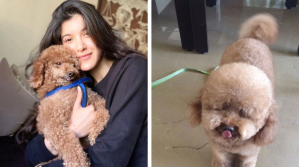 Shanaya Kapoor mourns the loss of her pet Scooby